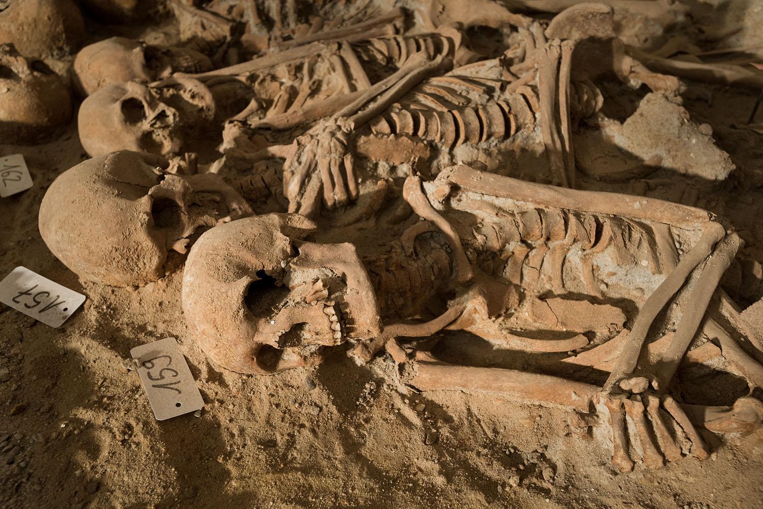 Alignement de corps dans une fosse commune (INRAP)