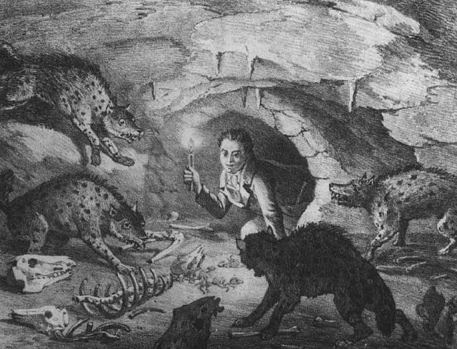 L'homme est-il une hyène pour l'homme, ou l'histoire de Hyena Crocuta crocuta
