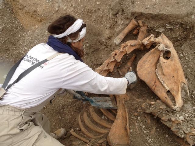 L'archéologie contribue-t-elle à fonder nos mythes nationaux ?