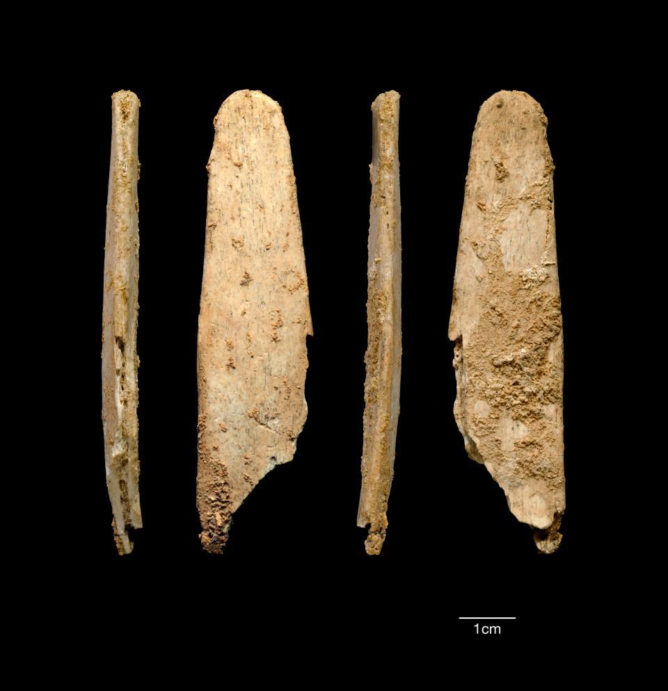 Néandertal a fabriqué les premiers outils spécialisés en os d'Europe