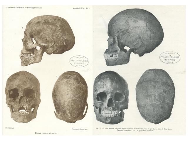 Faut-il réhabiliter l'homme fossile d'Asselar ?