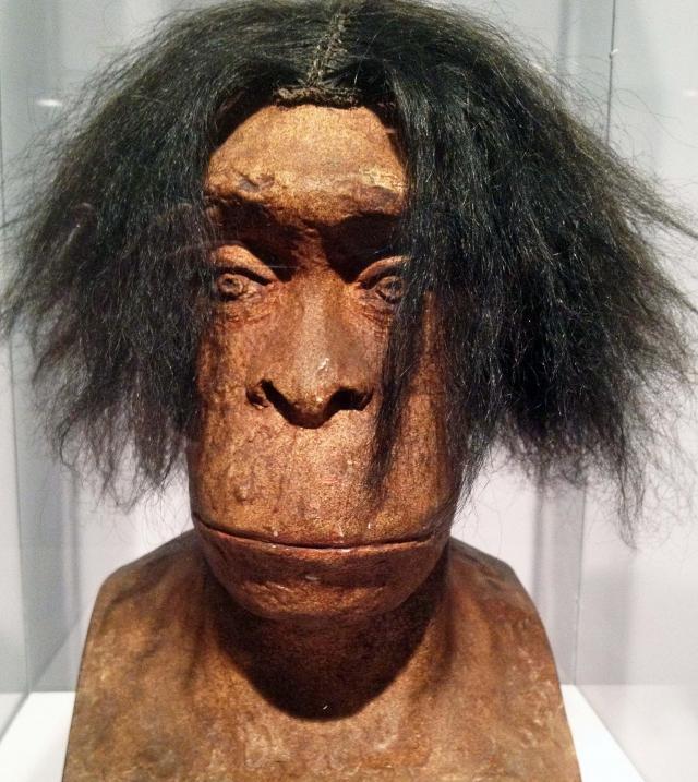 L'homme préhistorique, affreux, sale et surtout méchant ?