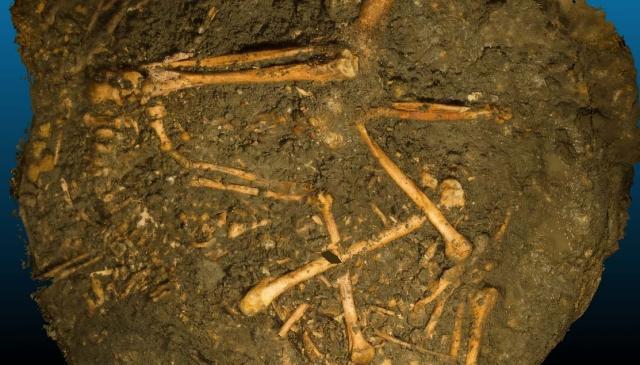 Le mystère du Puits sanglant, que s'est-il passé dans les entrailles d'Entrain-sur-Nohain ?
