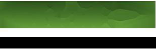 logo-raif-2016.png