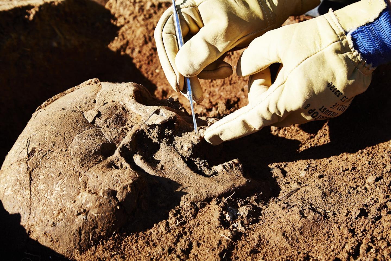 6-7-7 Dégagement du crâne d'un individu inhumé