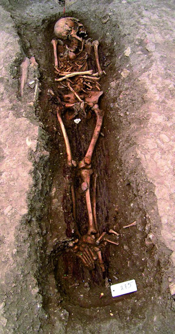 Vue de la sépulture 275
