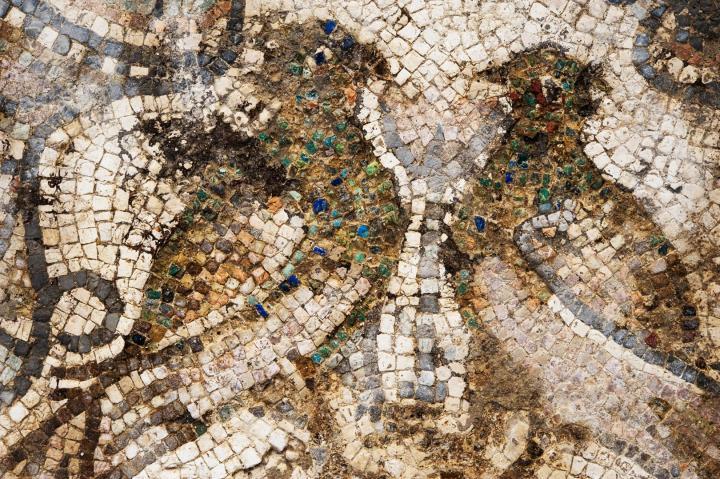 Deux paons de part et d'autre d'une fleur. Détail d'une mosaïque qui décorait le sol du palais épiscopal au Ve siècle.