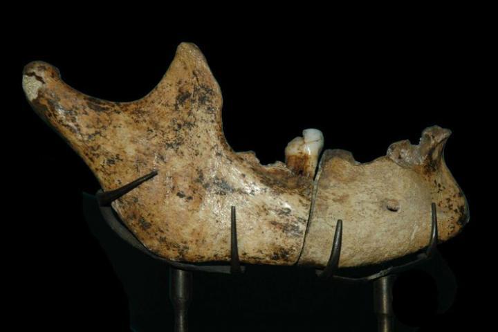 La mandibule de l'homme de Moulin Quignon veille de 600 000 ans ?
