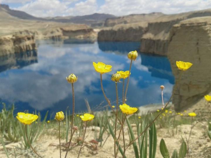 De Bactres à Bâmiyân (Afghanistan)