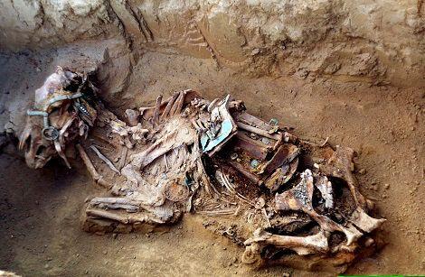 Tombe fouillée sur le site archéologique Alaas Ebé