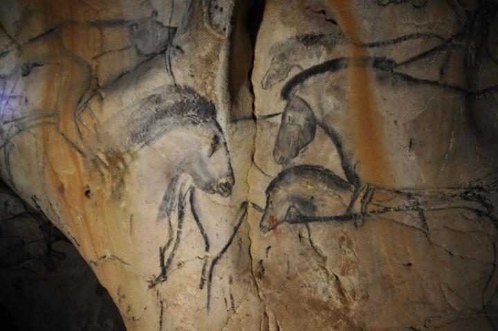 Détail de la grotte Chauvet