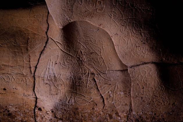 Paroi de la grotte de Font Major découverte en Catalogne (L'Espluga de Francoli)