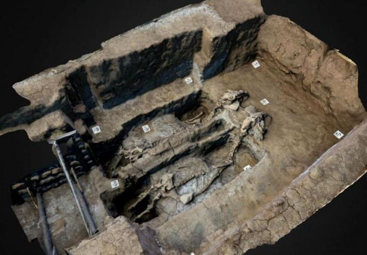 Char gaulois découvert sur le site de Sboryanovo (Bulgarie)