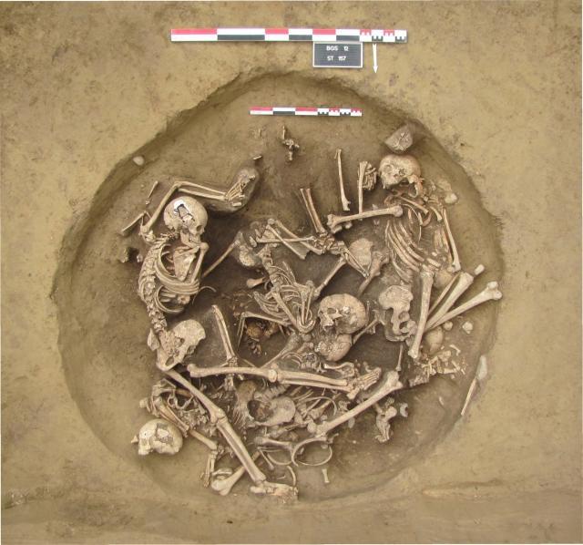 Le mystère de la fosse 157 de Bergheim