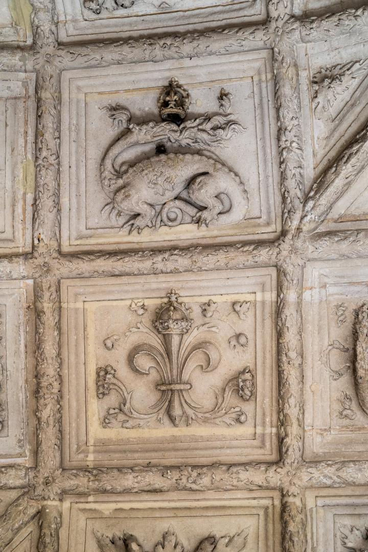 Détail du grand escalier à caissons, ornés de la salamandre, l'emblème de François Ier.