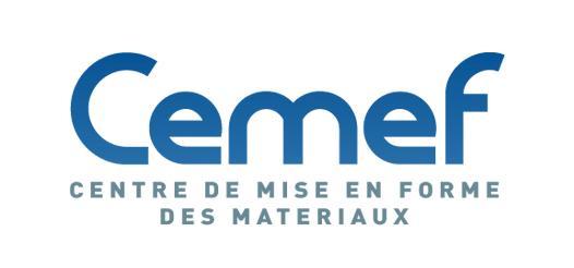 CEMEF logo