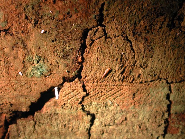 Sépulture 11, galon aux planchettes avec franges (au-dessus)