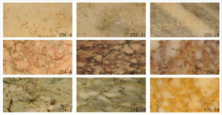 Échantillonnage des différents marbres utilisés en revêtement des murs sur le site à l'époque romaine.