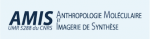 Logo AMIS
