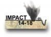 impact 14-18 logo