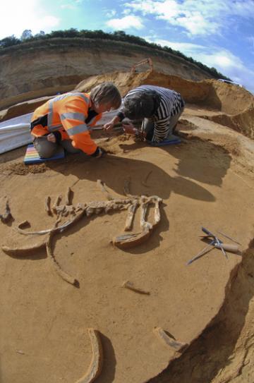 Quand Néandertal faisait halte à Tourville-la-Rivière