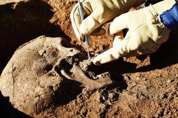 Aimargues : une fouille archéologique révèle cinq siècles d'histoire d'un village du haut Moyen Âge