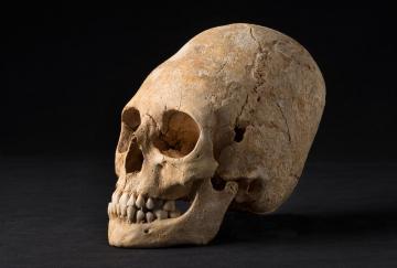 Un site archéologique d'exception à Obernai (Bas-Rhin) : plus de 6 000 ans d'occupation