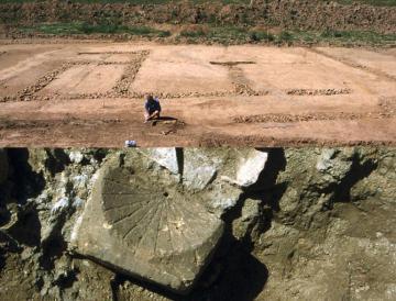 ZAC des Fossés Neufs