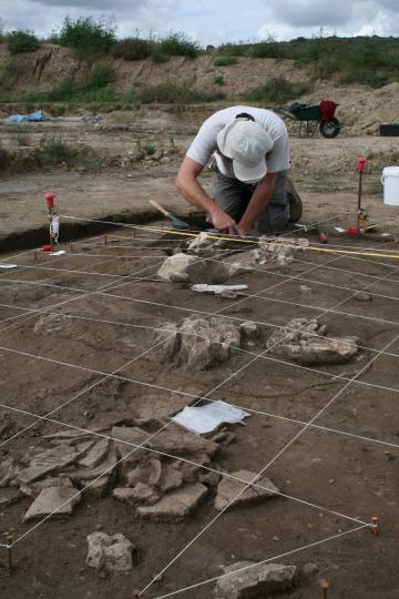 Une nécropole du premier âge du Fer à Cournonterral (Hérault) : la découverte de tombes-bûchers au profil inédit en Languedoc-Roussillon