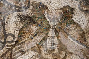 Découverte de mosaïques paléochrétiennes au pied de la Major, à Marseille