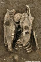 Des chevaux et des hommes : une pratique funéraire inconnue en Gaule romaine