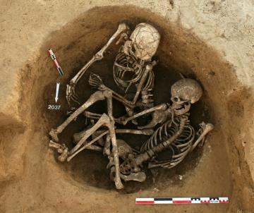 D'exceptionnelles sépultures du Néolithique récent à Gougenheim (Bas-Rhin)