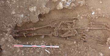 Une nécropole antique dans le quartier périphérique occidental de la ville de Saintes : plusieurs individus entravés, dont un enfant