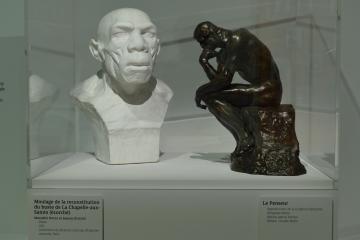 L'Homme de Neandertal, conférence de Pascal Depaepe