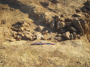La sépulture du Néolithique ancien installée dans un coffre de pierres, au moment de sa découverte lors du diagnostic.  Aven de Montel, Lunel-Viel (Hérault), 2014.  © André Raux, Inrap