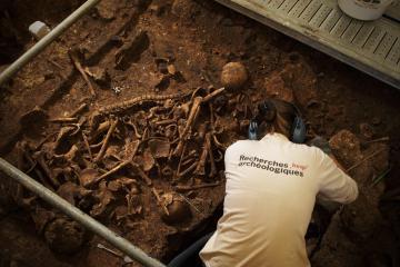 Restes osseux en cours de dégagement. Le Mas Rouge-La Cavalade, Montpellier (Hérault), 2013. © Rémi Bénali, Inrap