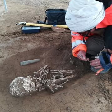 Fouille d'une sépulture du néolithique avec une petite hache en pierre polie (herminette).