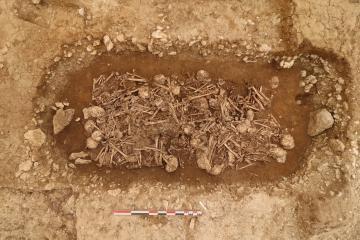 Vue des défunts dans la sépulture Néolithique.