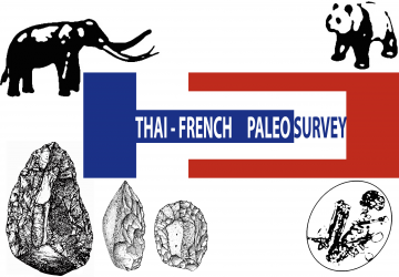 Logo Thai-French Paleosurvey