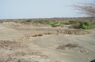 Turkana 1.jpg