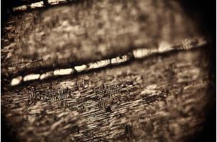 Arles-photo-fouilles-raphael_dallaporta.jpg