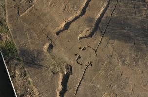 Saison néolithique 3
