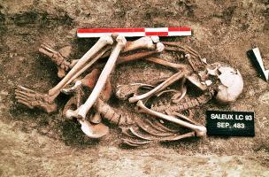 6-7-7 Squelette en position fœtale