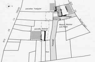 Plan des vestiges et de l'organisation parcellaire, XIVe-XVe siècles