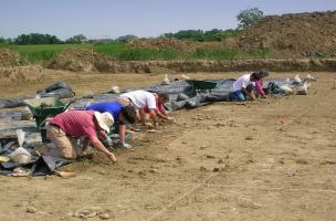 Fouille du niveau de sol du Chasséen ancien