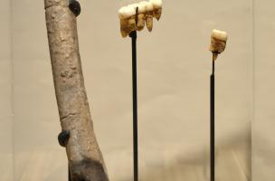 Muséum Néandertal 4