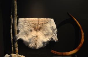 Muséum Néandertal 6