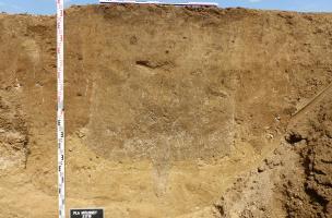 Moussey - profil d'une fosse Mésolithique