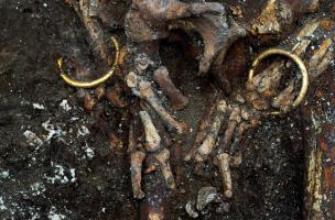 Détail des poignets d'un squelette retrouvé dans un complexe funéraire monumental exceptionnel, daté du Ve siècle avant notre ère, à Lavau (Aube) en 2015. Autour de chaque poignet repose un bracelet en or.