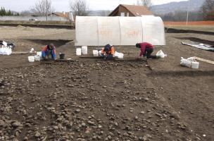 Fouille extensive d'un niveau de sol chasséen (IVe millénaire avant notre ère) sur le site des Queyriaux (Puy-de-Dôme) en 2011.  Les niveaux néolithiques étaient exceptionnellement bien conservés et ont livré une forte densité de structures (fosses, foyer